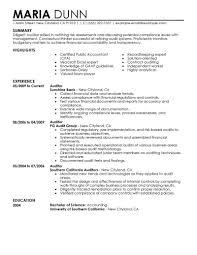 Sample Resume For Internal Auditor Sample Resume Bank Internal