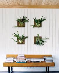 ... Indoor Plants Design Ideas Webbkyrkan Com Tropical House In Decorating  Green Taxi Tropical House Plants In