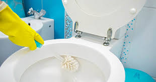 Best Bathroom Cleaning Products Adorable How To Clean A Toilet Bowl