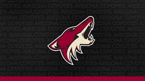 During that span the coyotes are 25th in the nhl with an average of 2.40 goals per game, and 24th with an average of 3.47. Digital Wallpapers Arizona Coyotes Arizona Coyotes