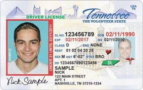 Ruling Federal Revocations Tennessee Appeal To Over License