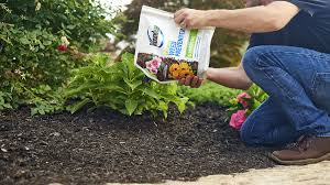 don t pull weeds and grasses prevent them apply roundup landscape weed preventer directly to soil
