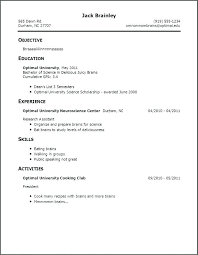 Resume Template For Students Extraordinary Resume Template No Experience Student Andaleco