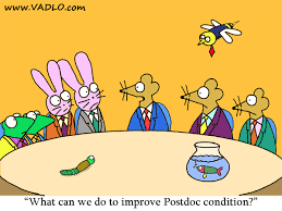 postdoc roundtable cartoons research animals concerned