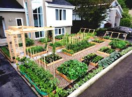 Kitchen Garden Project Simple Kitchen Garden Ideas