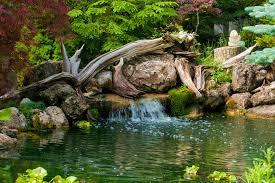 40 Cool Backyard Pond Design Ideas DigsDigs Magnificent Pond Garden Design