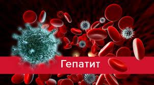 Картинки по запросу гепатит