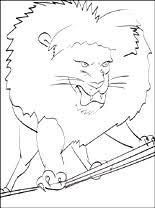 Kleurplaat Leeuw In Het Circus Gratis Kleurplaten