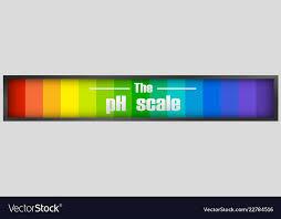 The Ph Scale Diagram