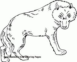 Peter And The Wolf Coloring Pages Free Color Bros