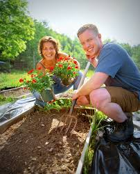 how to build and ive raised garden beds the old farmer s almanac