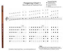 Wooden Flute Finger Chart Beginners Fingering Charts For Keyless D Flutes Martin Doyle Flutes