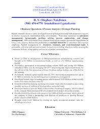 It Consultant Resume Example Cv Template Senior Independent