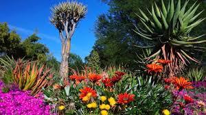 large size of botanical gardens california in southern for weddings claremont pasadena huntington ca near sacramento