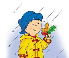 caillou with leaves