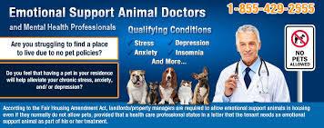 Doctors Note For Dog Online Emotional Support Animal Letters