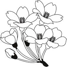 春の花3 18 さくら 花の無料イラスト素材 イラストポップ
