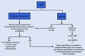 A Clinical Overview Of Autoantibodies In General Practice