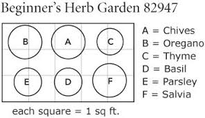 Small Picture Beginners Herb Garden White Flower Farm