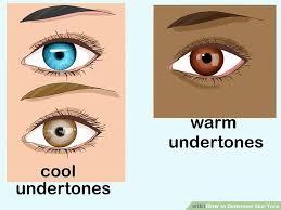 Skin Color Makeup Chart 6 Ways To Determine Skin Tone Wikihow