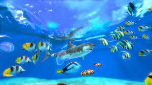 3D Marine Aquarium Screensaver for ...