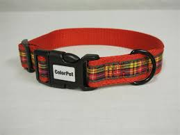 Patterned Dog Collars Simple Patterned Dog Collars
