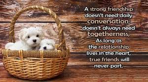 Quotes About Friendship Long Distance Best Friendship quotes If You Are True Friends Never Daily Talk It 53