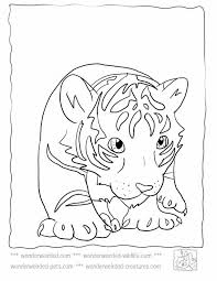 Small Picture Baby Tiger Coloring Pages at wwwwonderweirded wildlifecombaby