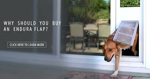 dog doors for walls weather tight pet door ever made electronic dog doors for walls reviews dog doors for walls