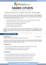 professional resume writers in maryland executive public sector resume executive government resume writers