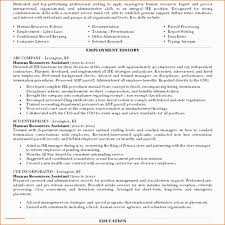 Luxury Executive Level Resume Template Free Resume Example And