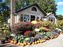 the secret garden your professional local florist in jamestown for quality flower arrangements and gifts in jamestown order from the secret garden