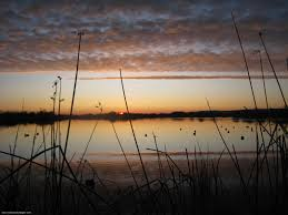 cool hunting backgrounds. 1000+ Images About Hunting On Pinterest   Waterfowl . Cool Backgrounds