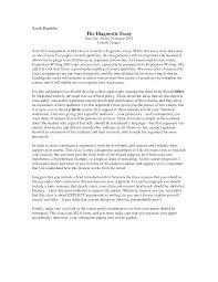 diagnostic essay example template diagnostic essay example