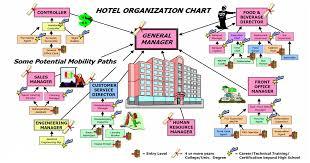 Management Information Systems Assignment Organizational Chart