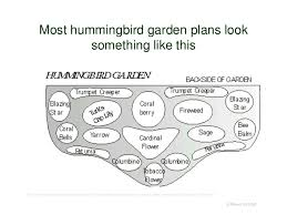 Small Picture Planning Hummingbird Heaven with water wise hummingbird plants 2