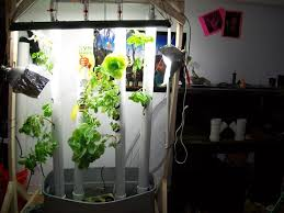 Vertical Herb Garden In Your Kitchen 20 Inspiring Pvc Pipe Projects For Gardeners The Self Sufficient