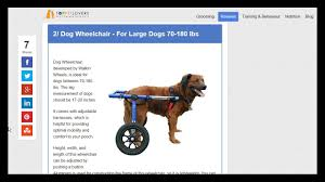 dog wheelchair reviews top rated dog wheelchairs