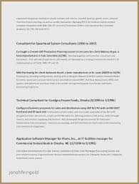Technical Skills On A Resume Cool Examples Of Nontechnical Skills On A Resume Inspirational Resume