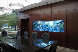 Fanciful Custom Office Conference Room Aquarium By Aqua Creations Aquariums  Aqua Creations in Custom Fish Tanks