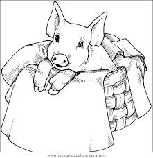 Disegno Maiale38 Animali Da Colorare