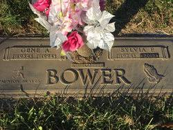 Sylvia Marie Fitzgerald Bower (1924-2015) - Find A Grave Memorial