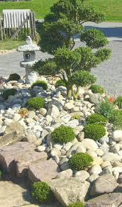 Japanese Garden Plants Best 25 Japanese Rock Garden Ideas On Pinterest Japanese Garden