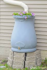 this rain barrel is perfect it s beautiful to look at efficient and functional i love that they have planted flowers on the lid to make it look even