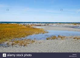 Low Tide Massachusetts Stock Photos Low Tide Massachusetts
