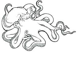 Coloring Pages Octopus Coloring Pages For Adults Easy Online