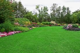 Commercial Jr Landscape Management Services Berkeley