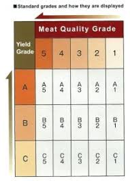 Japanese Beef Grading Chart Wagyu Beef Grade Marbling In Wagyu Beef