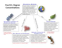 biology department undergraduate degrees saint louis if you are interested in pursuing a bs in biology you can choose from one of five concentrations biological science plant science ecology evolution and