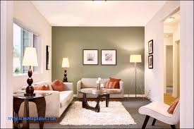 accent wall paint ideas elegant brown accent wall ideas